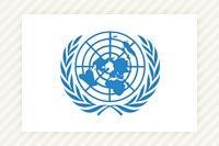 資料:国連寄託図書館 国際機関...